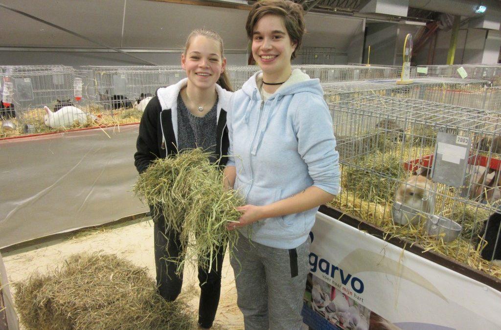 Jongeren van opleiding dierverzorger steken handen uit de mouwen