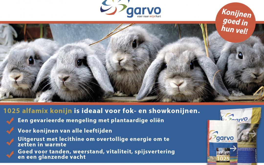 Garvo stelt kampioensjassen beschikbaar